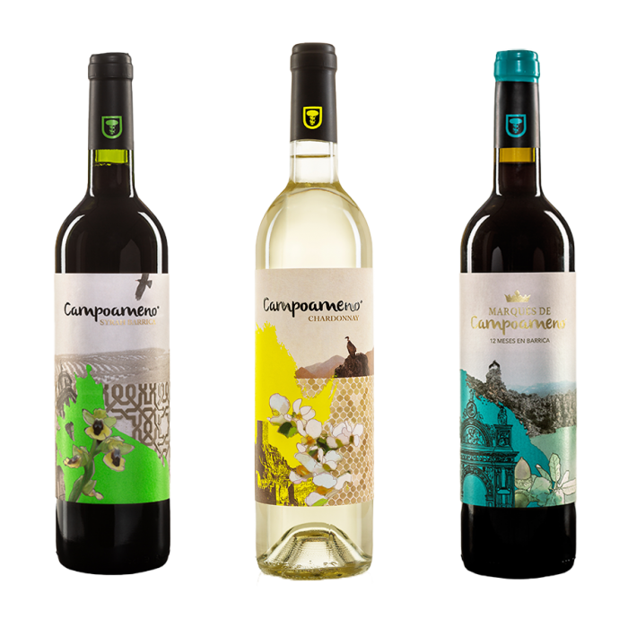 Pack Vino Tinto y Blanco Bodegas Campoameno